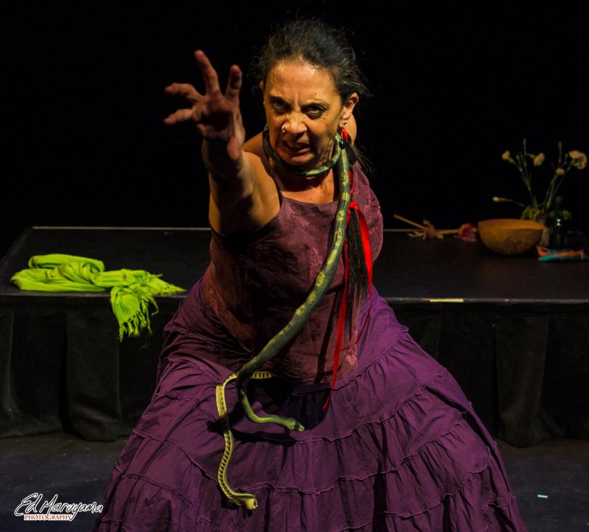Norma Araiza as Vibora de los Veinte Venenos